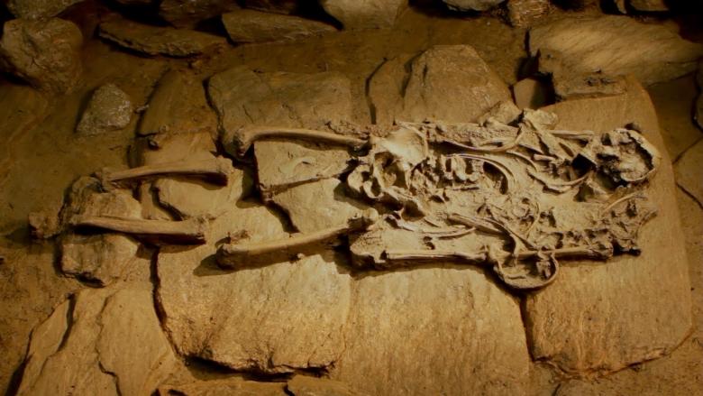 Il guerriero viaggiatore nella sua eterna dimora (Akhet-Stevanon)