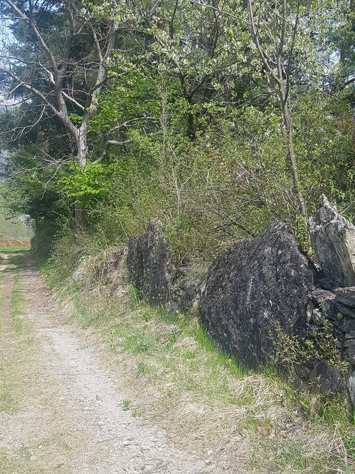 Introd - Il sentiero dei grandi lastroni di pietra (foto di Patrizia Luboz)